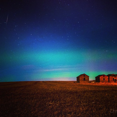 Shooting star- make a wish! #Aurora #alberta #aurorachasers #auroraborealis #borealis #beautiful #canada #ctown #captureyyc #christyturnerphotography #d300 #hometown #ilovestars #instapics #lights #longexposure #northernlights #nightphotography #nature #n