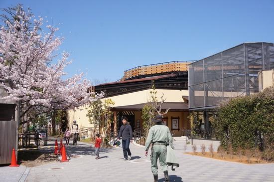 kyotozoo33