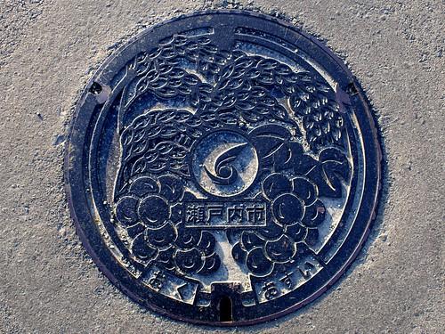 Setouchi Okayama, manhole cover (岡山県瀬戸内市のマンホール)