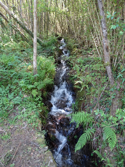 Fervenza en el PR-G 172 Ruta do río Chanca