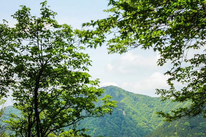 2014-05-24_00136_鍋割山.jpg