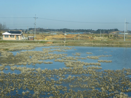 Co-Jeonju-Gwangju-bus (15)
