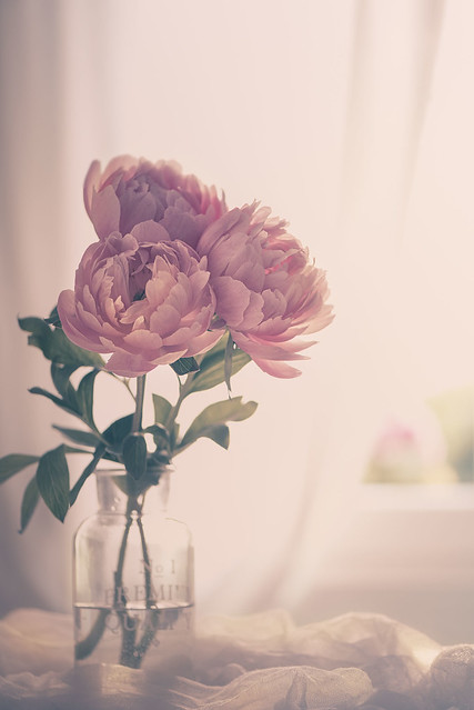 When in doubt, add peonies!