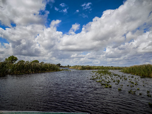 us unitedstates florida swamp airboat verobeach fellsmere bluecypressswamp