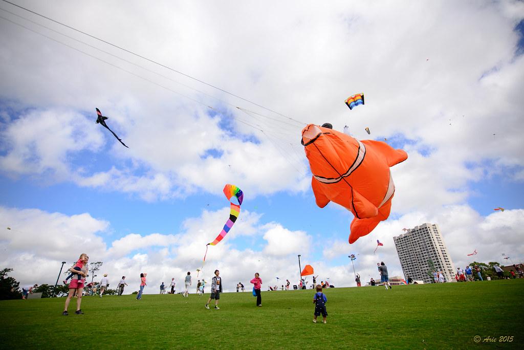 2015 Hermann Park Kite Festival