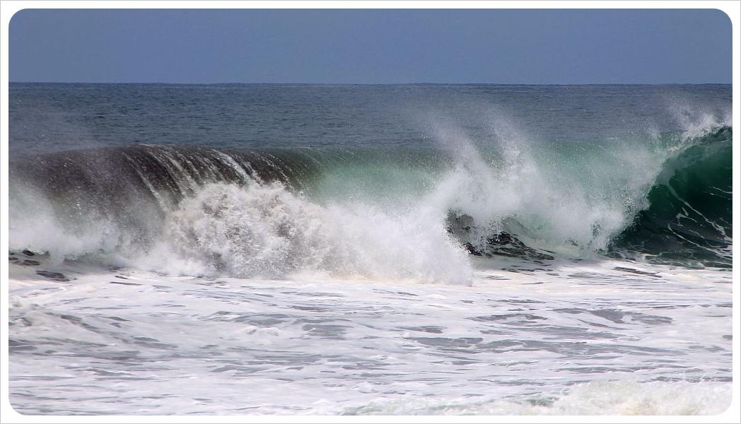 nosara wave