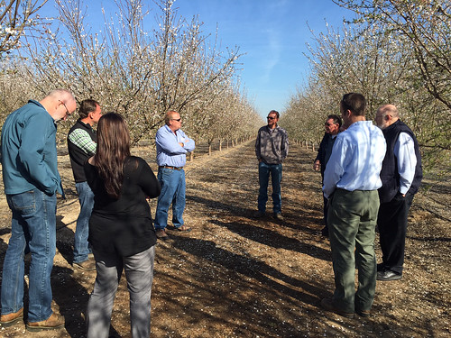 NRCS staff toured an almond orchard near Modesto, California as part of its tour of the state to look at ways agricultural lands can reduce greenhouse gas emissions and store carbon. NRCS photo by Kari Cohen.