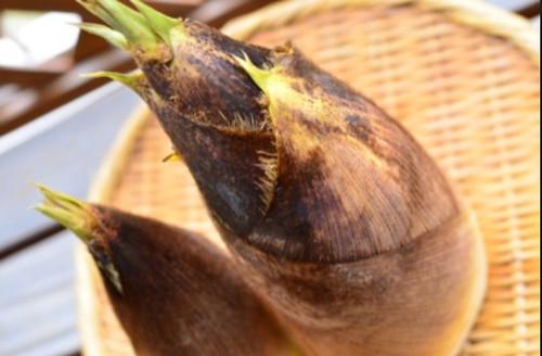 竹の子季節料理 - Поиск в Google - Mozilla Firefox 16.03.2015 222213