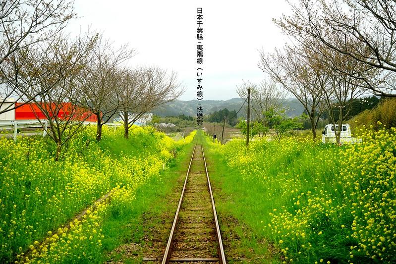 DSC04136_副本
