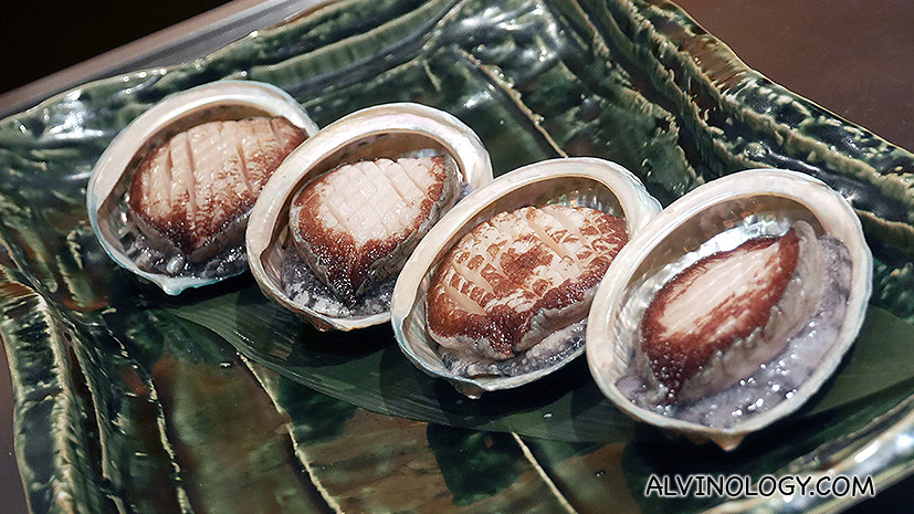 These beautiful, fresh Tasmanian abalones followed