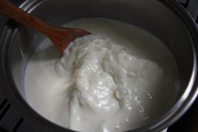Dulce de Leche Casero (4)