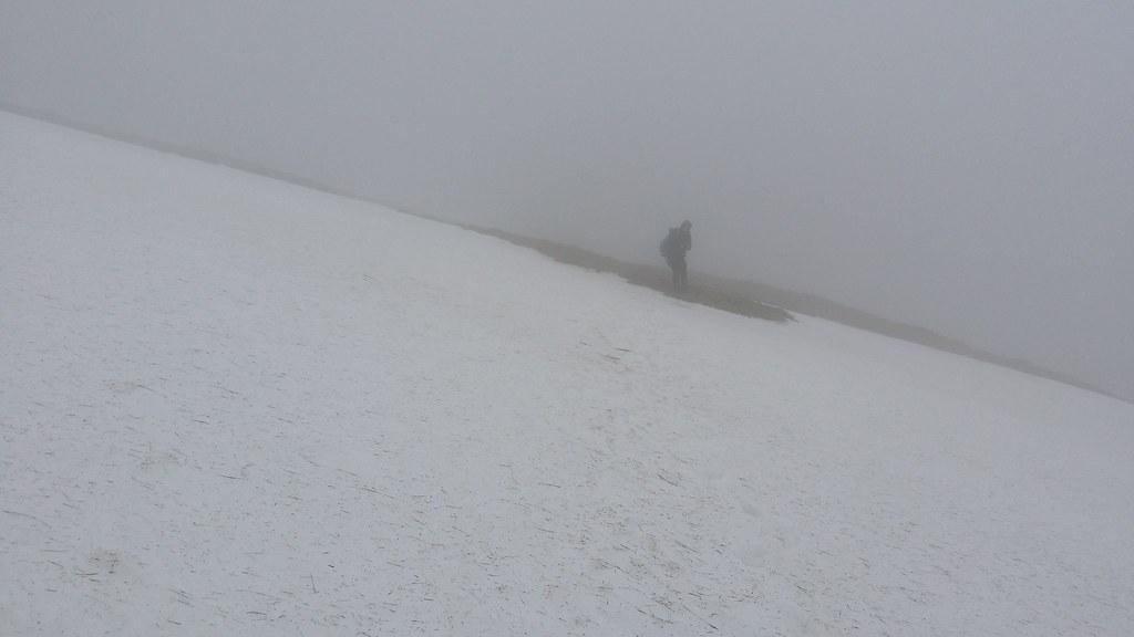 Crossing the snow #sh