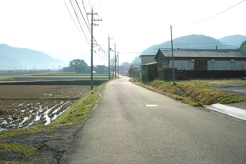 琵琶湖に向かって