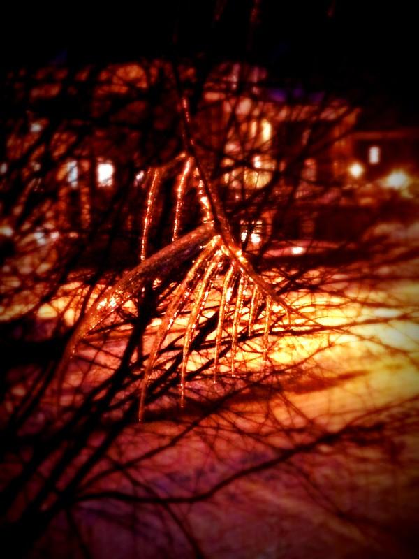 Ooh, scary tree.