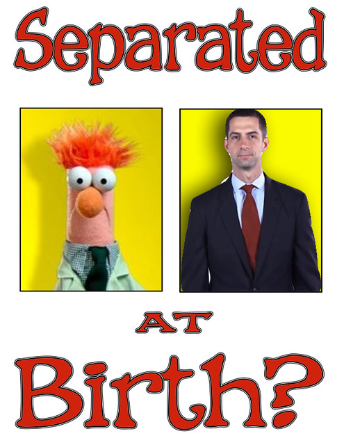 Tom Cotton Separated at Birth
