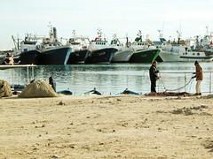 Le port et les pêcheurs