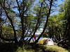 Campamento en Laguna Huesquefilo