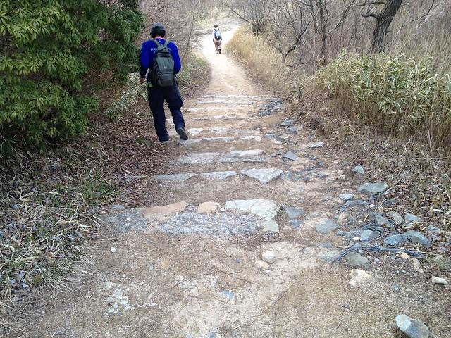 六甲全山縦走路 一軒茶屋への石段