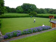 botanical garden(0.0), sport venue(0.0), yard(0.0), golf club(0.0), estate(0.0), golf course(0.0), meadow(0.0), backyard(1.0), shrub(1.0), flower(1.0), garden(1.0), grass(1.0), artificial turf(1.0), landscaping(1.0), lawn(1.0),
