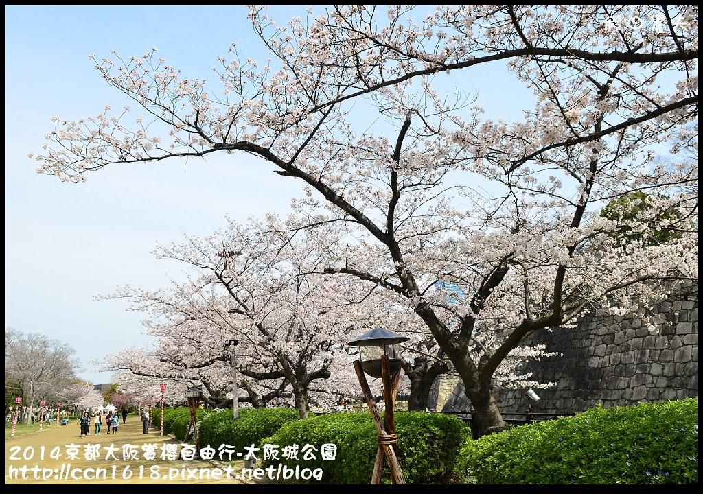 2014京都大阪賞櫻自由行-大阪城公園DSC_1852
