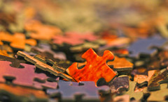 Sticking Out In A Puzzling Assortment