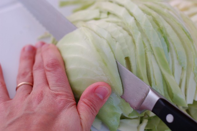Slicing the Green Cabbage for Indian-Spiced Braised Cabbage by Eve Fox, The Garden of Eating, copyright 2015