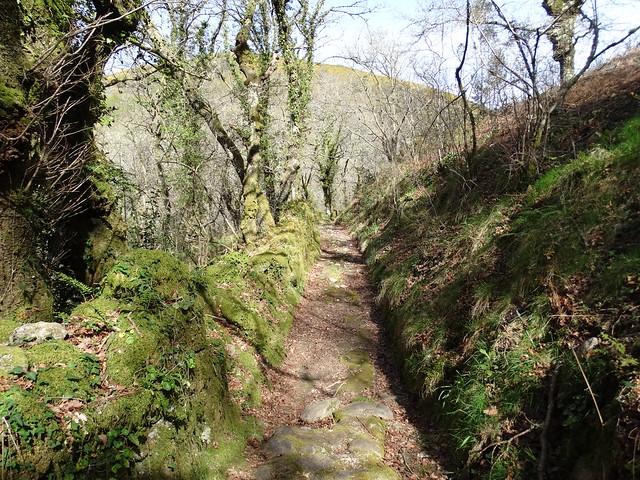 Corredoira en la ruta Tras os Pasos do río Barbeira - Ruta da Liberdade