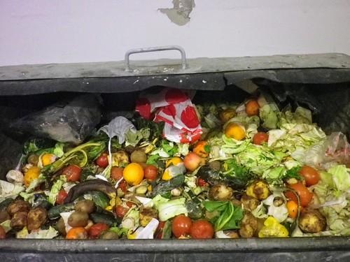 堆滿食物的垃圾桶。圖片來源:楊宗翰