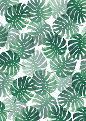 Surface Pattern Monstera