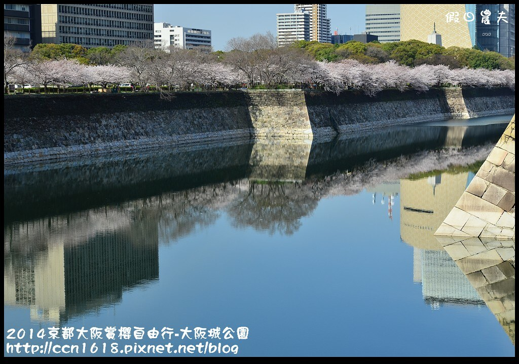 2014京都大阪賞櫻自由行-大阪城公園DSC_1752