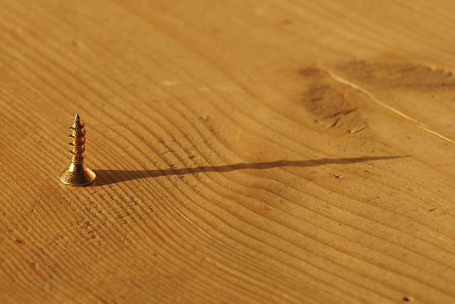 Een kruiskop en zijn schaduw