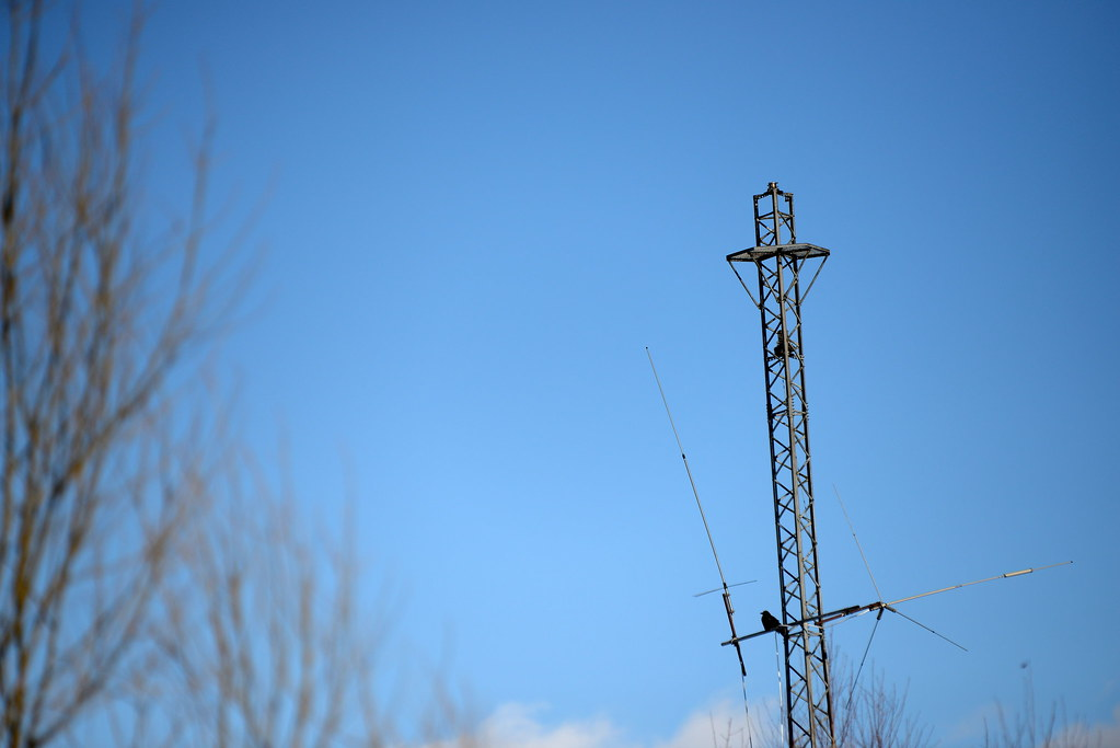 tower & crow