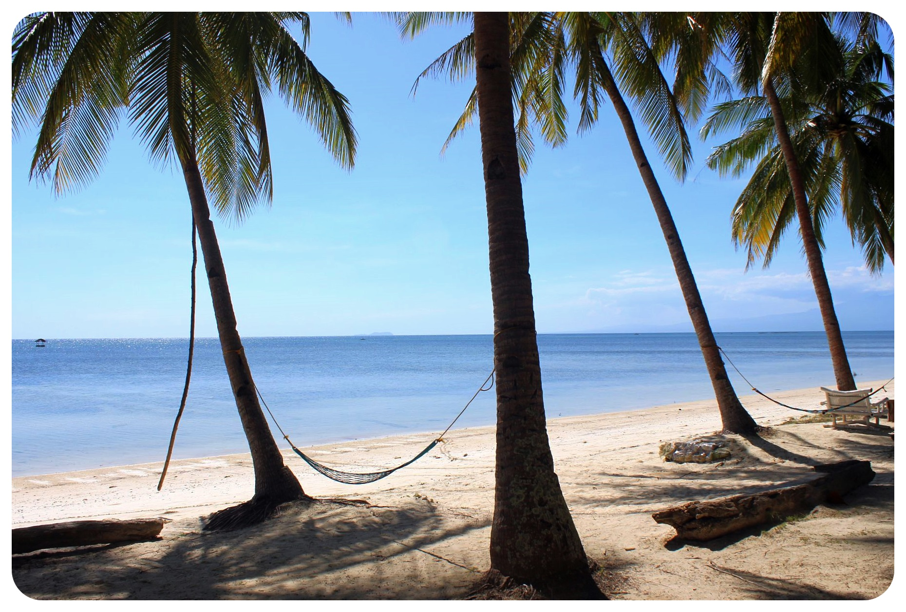siquijor beach with hammock philippines
