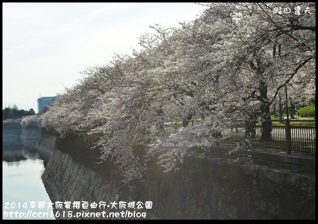 2014京都大阪賞櫻自由行-大阪城公園DSC_1662