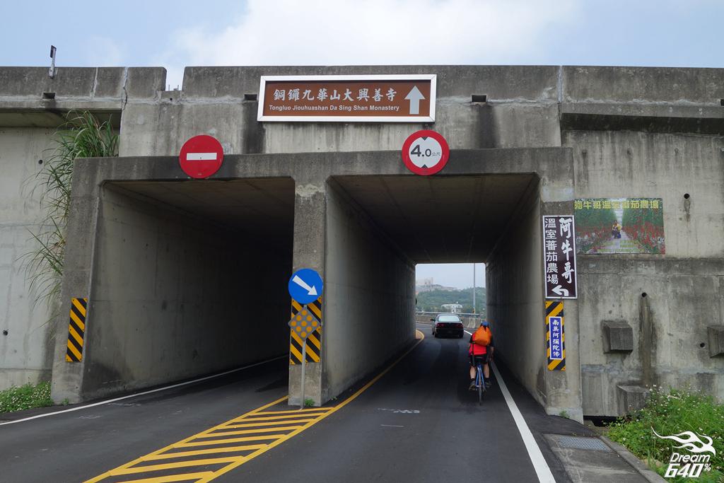 苗栗賞油桐-客家大院九華山天空步道24