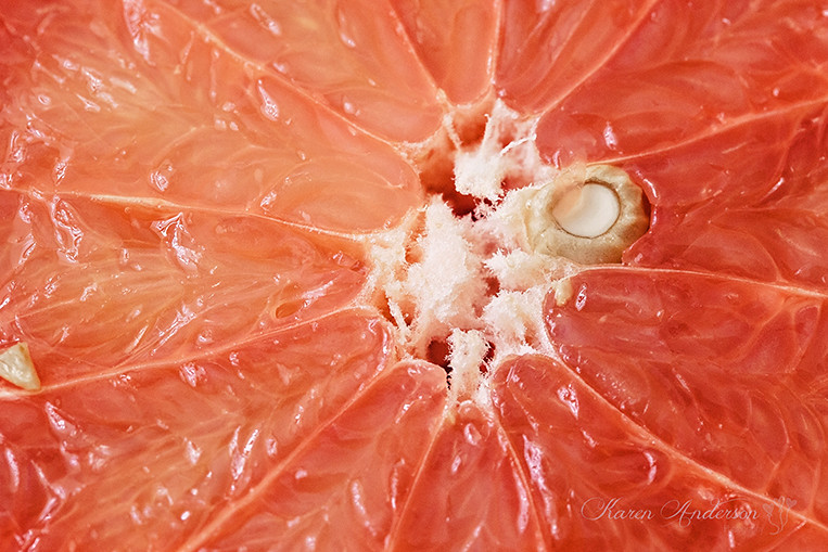 A closer look at a Pink Grapefruit