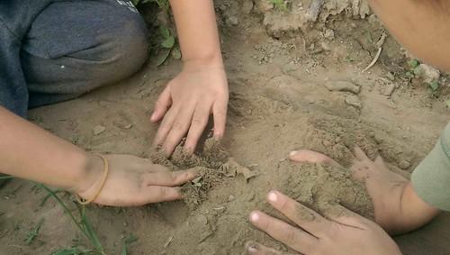 我相信以後他長大,會記得田裡的顏色、空氣的味道,還有農民的吆喝聲!圖片來源:李慧宜