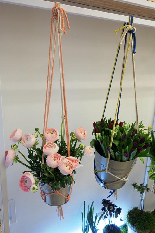 Kurator Praha květiny