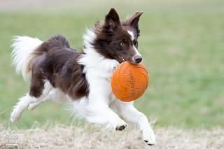 Eyck love frisbee