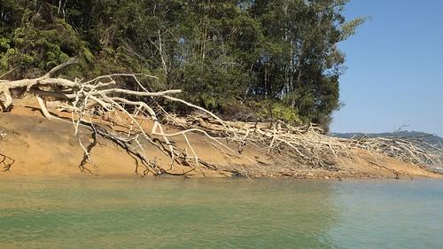 快艇疾駛而過的船浪沖刷湖岸