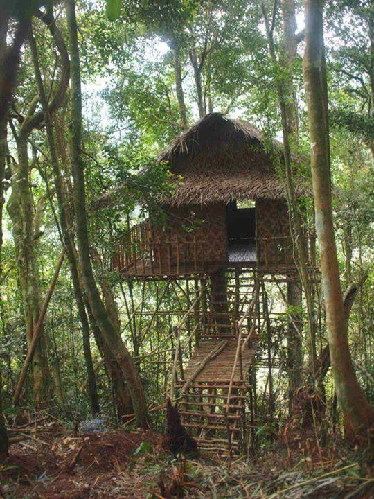 The Tree House Hotel Ilfracombe