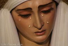Besamanos - Virgen del Buen Fin - Marzo 2015
