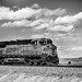 More Songs About Trains by Thomas Hawk