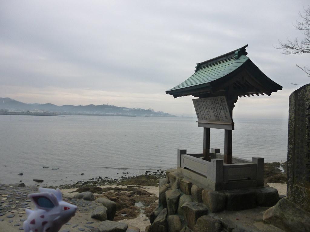 Nidoran♀ in Gamagori, Aichi 31 (Yaotomi shrine)