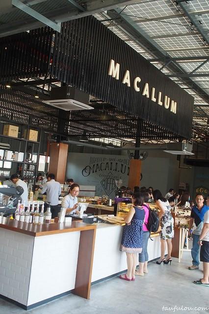 macallum (2)