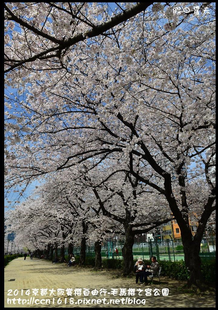 2014京都大阪賞櫻自由行-毛馬櫻之宮公園DSC_2088