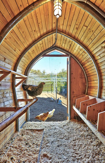 Architecture Research Office - Chicken Coop 雞舍 - Photo 09