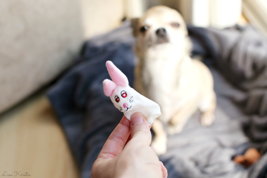 ikea bunny rabbit finger puppet dog chihuahua toy easter