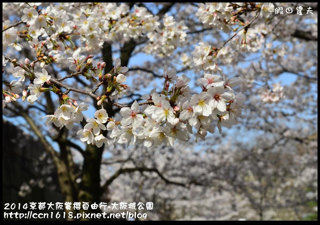 2014京都大阪賞櫻自由行-大阪城公園DSC_1756