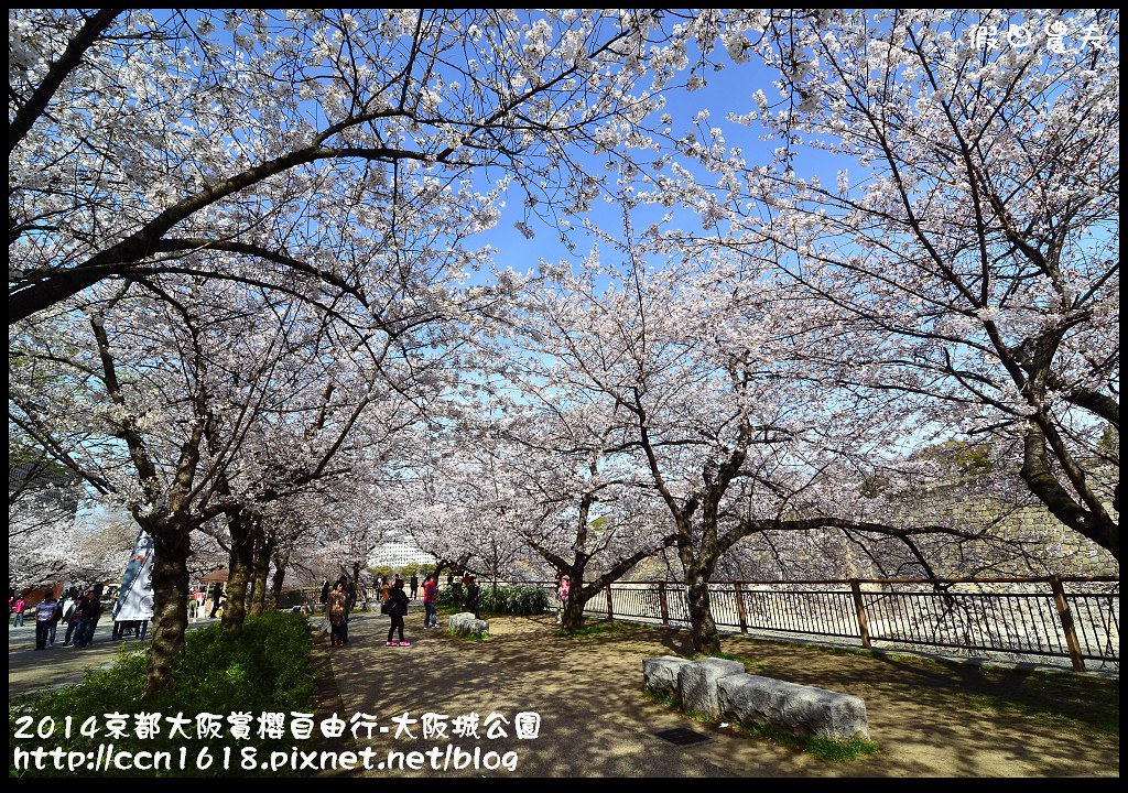 2014京都大阪賞櫻自由行-大阪城公園DSC_1733